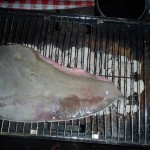 Sting Ray Wing - Grilled