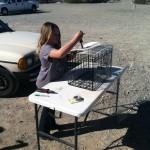 Lydia modifying her rat cage