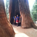 Our first experience being able to touch the giants
