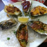 Pacific Oyster - Bay City, Oregon